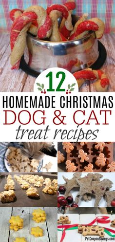 These Homemade Christmas Dog and Cat Treat Recipes are sure to be a crowd pleaser for all of your furry family members. These Homemade Christmas Dog and Cat Treat Recipes are sure to be a crowd pleaser for all of your furry family members. Puppy Treats, Diy Dog Treats, Homemade Dog Treats, Easy Dog Treat Recipes, Healthy Cat Treats, Puppy Food, Pet Food, Christmas Food Treats, Christmas Dog