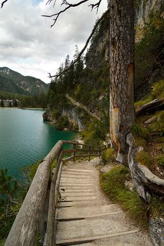 The trail to Lago di Braies, Dolomites, Italy (by pxls.jpg)