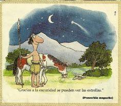 """""""Gracias a la oscuridad se pueden ver las estrellas."""" Proverbio mapuche"""