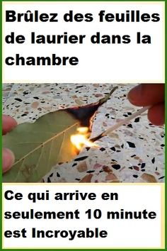 Simply burn a dry bay leaf in an ashtray and leave the room for 10 minutes. When you come back, you will notice a completely different atmosphere, and you will.reatment - Diy Healthy Home Remedies Herbal Remedies, Health Remedies, Home Remedies, Health And Beauty, Health And Wellness, Health Fitness, Yoga Fitness, Natural Cures, Natural Healing