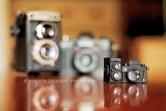 Little by Little by Bi   Creative Toy Photography Around The World - Blog of Francesco Mugnai