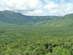 Gambela National Park - Ethiopia African Union, Ethiopia, National Parks, Mountains, World, Nature, Travel, The World, Naturaleza