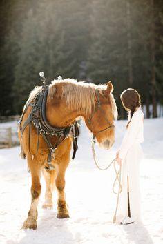 283 Best Montana And Idaho Images Idaho Equestrian Flathead Lake