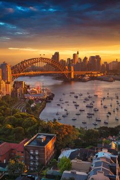 Cityscape image of Sydney, Australia with Harbour Bridge and Stock Photo: 134806559 - Alamy Camping Places, Vacation Places, Vacation Spots, Vacation Travel, Visit Australia, Western Australia, Australia Travel, Queensland Australia, Melbourne Australia