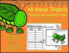 FREEBIE  Simple planning sheet layout for beginner writers on the topic of insects with insect themed writing paper.