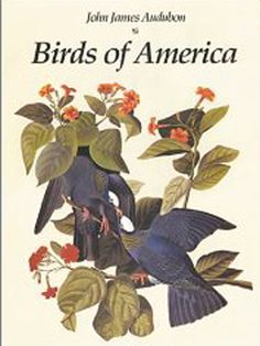 When I think of a $11,400,000 book this was not the first thing that came to mind, but I get it now.  This 3 foot tall book includes 1,000 life size illustrations of 435 birds hand drawn by West Indian born American artist John James Audubon in 1830.