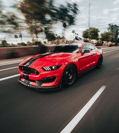My Dream Car, Dream Cars, Ford Mustang Gt, Mustangs, Muscle Cars, Manchester, Super Cars, Eye Candy, Classic Cars