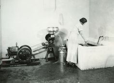 Woman using Cream Separator   Photograph   Wisconsin Historical Society