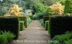 Clipped Yew hedging in a traditional garden, by Matt Nichol Garden Design.