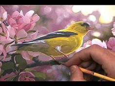 """Learn to Paint """"Touch Of Gold"""" Art Instruction dvd by Derek C Wicks"""