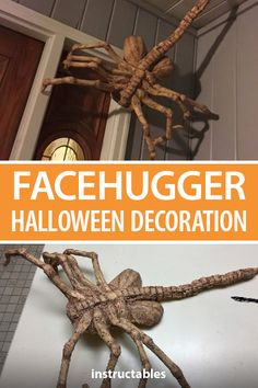 Paper mâché over a wire and cardboard base to make a Facehugger Halloween decoration that can be put up anywhere. Halloween Crafts, Halloween Decorations, Halloween Stuff, Halloween Costumes, Xenomorph Costume, Clothes Line, Men Clothes, Acrylic Craft Paint, Masking Tape