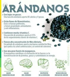 Los Arandanos #vidasana #comerbien #alimentos #salud #arandanos