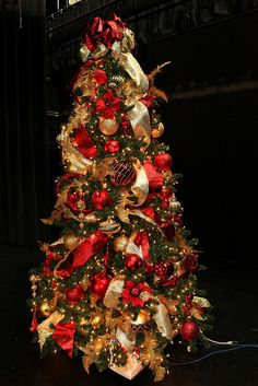 Red and Gold Stage Tree, via Flickr.