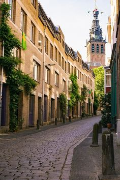 Are you looking for the best things to do in Nijmegen? Here you will find an itinerary to spending one day in Nijmegen, The Netherlands. Croatia Travel, Thailand Travel, Italy Travel, Bangkok Thailand, Travel Europe, Victoria Hotel Amsterdam, Amsterdam Travel, Las Vegas Hotels, Nightlife Travel