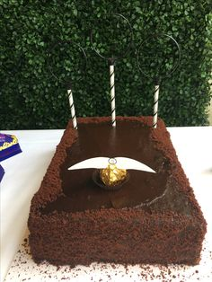 Harry Potter quidditch field with golden snitch cake Harry Potter Quidditch, Theme Harry Potter, Harry Potter Birthday, Birthday Cakes, Birthday Ideas, Golden Snitch, Party Planning, Mermaid, Desserts