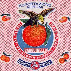 The animals on fruits' tissue paper - Italian Ways Vintage Labels, Vintage Ads, Vintage Images, Vintage Posters, Vintage Designs, Retro Packaging, Packaging Design, Inspiration Design, Logo Design