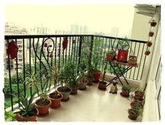 Design Decor & Disha: Balcony Garden