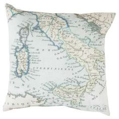Mapped in Magnificence Indoor/Outdoor Pillow