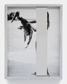Elad Lassry at the Vancouver Art Gallery