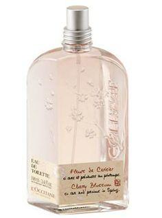 Le parfum Cherry Blossom (Fleurs de Cerisier) de L'Occitane. Plusieurs petites boutiques disponibles en Belgique (Bruxelles et Louvain-la-Neuve notamment. Quelques produits sont aussi disponibles en pharmacie. #LOccitane #parfum