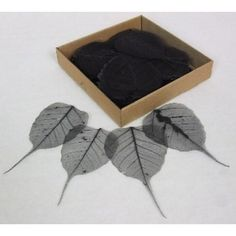 Black Skeleton Leave -   Natural Floral Supplies These amazing detailed detailed skeleton make wonderful craft materials.  They are light and delicate and can be used in an array of ways.  Let you're creative imagination run wild with thsee esquisite leaves.  We also offer these skeleton leaves in a  wide range of colours:  Gold, Silver, Fuschia, Aqua Marine, Apple Green, Pink, Lilac, Blue, Bordeaux, Black, Red, Orange and Yellow.   For more craft supplies please visit our shop…