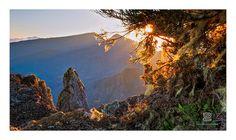Cirque de Mafate (vue de Piton Maïdo) - Ile de la Réunion   Flickr: partage de photos!