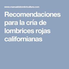 Recomendaciones para la cría de lombrices rojas californianas