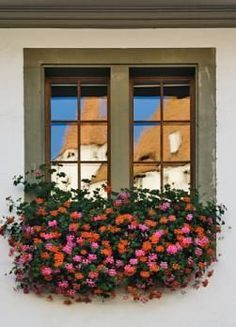 Best Plants For Window Boxes / site give you lots of info; plants for sun, shade, annuals, perennials, trailing plants & aromatic herbs for window boxes.