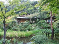 secret gardens of tokyo | Nezu Museum, Tokyo's Secret Garden - Tokyo Times