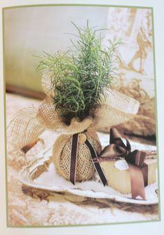 Gifting garden rosemary!
