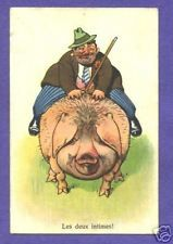 Y4397   Pig postcard, Old man with cigar rides pig