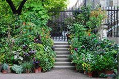 Gate design - Home and Garden Design Ideas