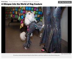 "TIME Magazine - A glimpse into the world of dog couture. ""ZZ wearing a custom made jumpsuit designed by Olga Yuditsky to match Ilene's also custom made outfit for her disco themed birthday party.""  Read more: A Glimpse Into the World of Dog Couture - LightBox http://lightbox.time.com/2013/09/05/a-glimpse-into-the-world-of-dog-couture/#ixzz3TYOxwBeb"