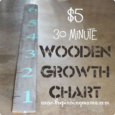 How to Make a Wooden Growth Chart for under