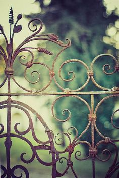 elegant Vintage wrought iron fence - would love to have this opening up to the garden room