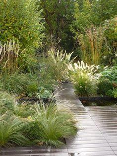 Siergrassen Siergrassen The post Siergrassen appeared first on Gartengestaltung ideen. Back Gardens, Small Gardens, Outdoor Gardens, Back Garden Design, Garden Landscape Design, Big Garden, Garden Care, Easy Garden, Garden Beds