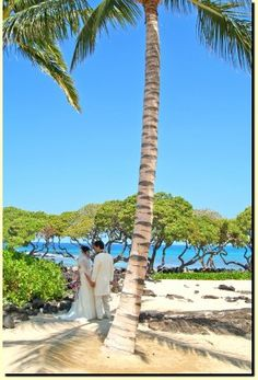 Hawaii...I would love to renew my wedding vows right here.
