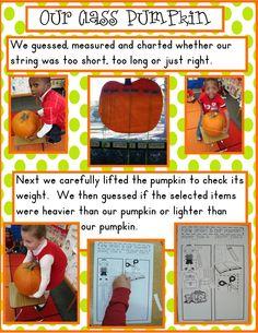 Golden Gang Kindergarten: Pumpkins and Bats Freebie, weighing pumpkin
