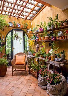 """Assim que o quintal ficou pronto, ele pediu para a arquiteta paisagística Michelle Simoncello Boccalato, da Officina di Casa, transformar a entrada em um orquidário. """"Introduzi vasos vietnamitas, adicionei alguns elementos da família dele, como as louças portuguesas, e fiz uma pintura caiada na parede para aquecer o ambiente"""", conta a profissional. As telhas transparentes iluminam o espaço, garantindo o bom desenvolvimento das espécies."""