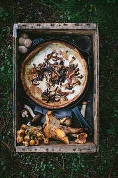 Mushroom Dutch Baby With Roasted Chanterelle Butter Go and get some delicious mushrooms for this savory Mushroom Dutch Baby recipe! #autumn #breakfast #fall #mushroom #pancakes #thyme #Uncategorized #vegetarian #winter #dutchbaby https://adventuresincooking.com/mushroom-dutch-baby-with-roasted-chanterelle-butter/