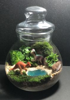 Inspired to make this after watching Jurassic World. Don't you think the purple dinosaur looks like the intelligent dinosaur 'the blue' in the movie. Jurassic World, Terrariums, Purple, Blue, Gardening, Movie, Landscape, Inspired, Ideas