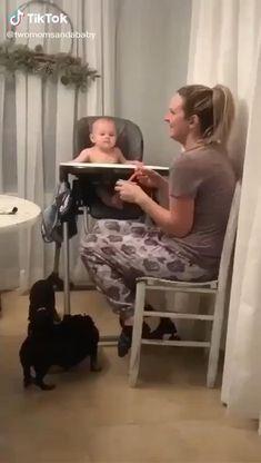 Funny Baby Memes, Cute Funny Baby Videos, Cute Funny Babies, Super Funny Videos, Funny Videos For Kids, Funny Video Memes, Funny Short Videos, Really Funny Memes, Cute Kids