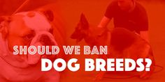 Not all dog breeders are equal. Similarly, just because a dog breeder is licensed does not mean the breeder is responsible or has the best interests of the animals in mind.