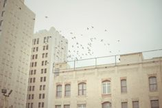 Cityscape Photography - Buildings 3: Los Angeles, CA