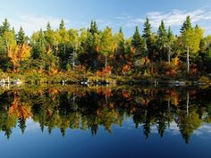 Lakeside Reflection  Photograph by Raymond Gehman  A still lake reflects sky and trees in Canada.