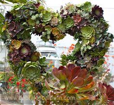 Succulent heart wreath.