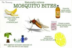Naturally relieve mosquito bites
