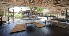 Shima Kitchen, the hub, Teshima