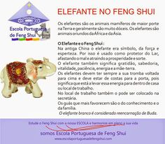 Escola Portuguesa de Feng Shui: ELEFANTE PARA O FENG SHUI