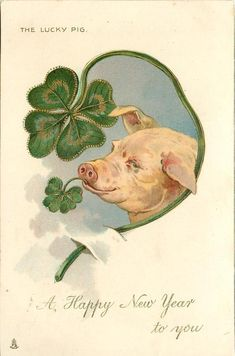 A HAPPY NEW YEAR TO YOU pig looks right